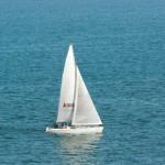 velero en la mar