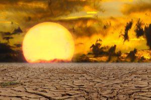 la alimentación vegana reduce el impacto del cambio climático